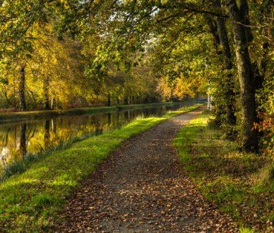 Balade d'automne le long du canal